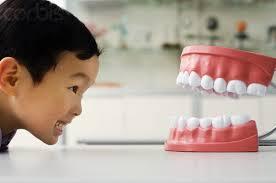 Những câu hỏi thường gặp về răng miệng